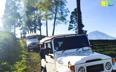 Wisata Jeep Di Dieng City Tour 2021